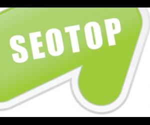 Seotop - добавление ссылок в социальные сервисы