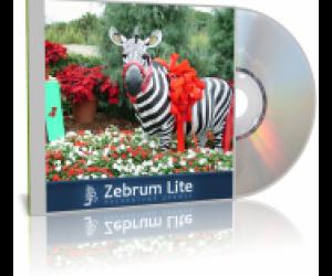 Zebrum Lite